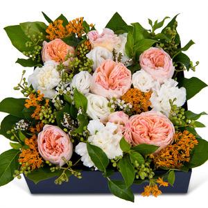 지젤라 꽃상자