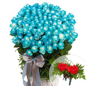 파란장미 100송이바구니 (예약상품)